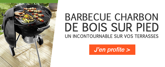 banner-barbecue.png